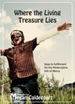 RG-LT - Where the Living Treasure Lies - 4 CD set